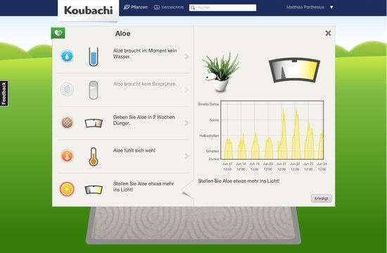 koubachi-pflanzen