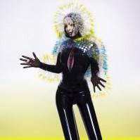 Björk-Vulnicura